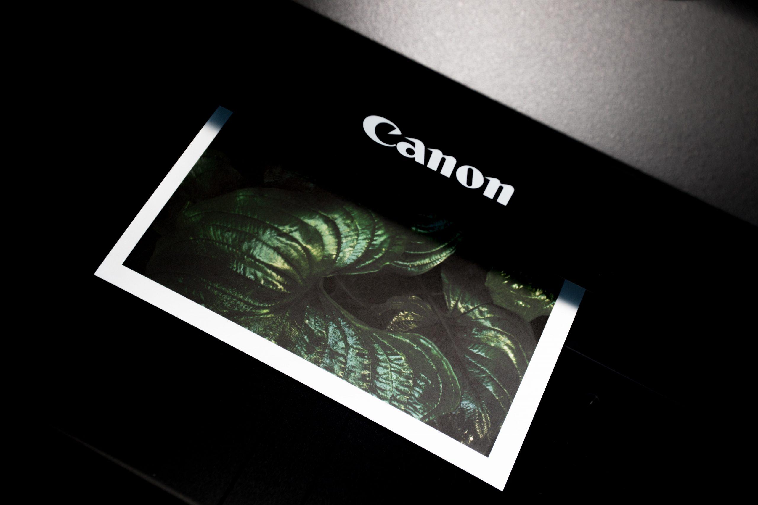Fotodrucker: Test & Empfehlungen (04/21)